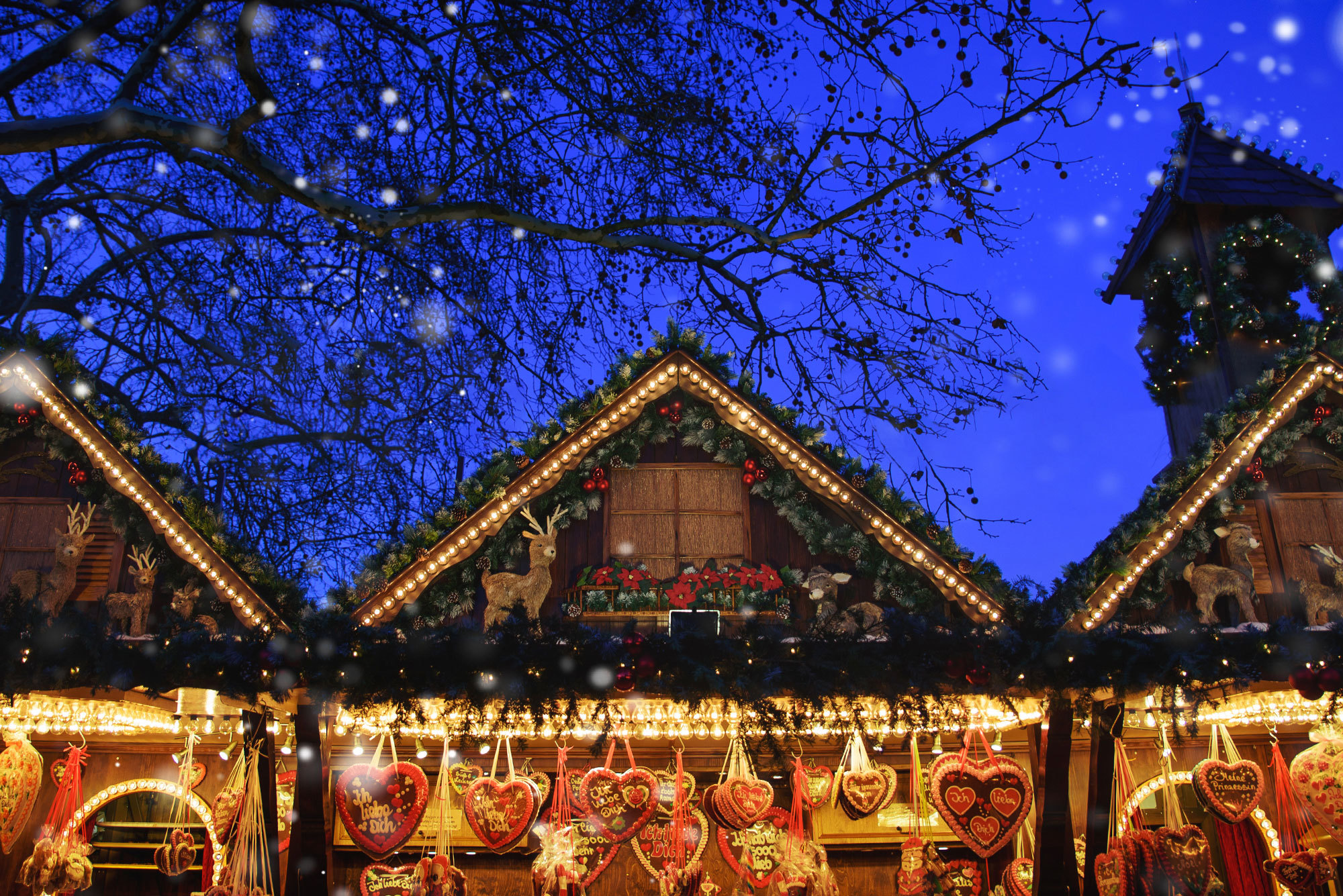 Exploring the South West Christmas Markets
